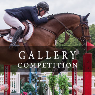 Gallery Competition